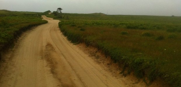 Beach dirt road.