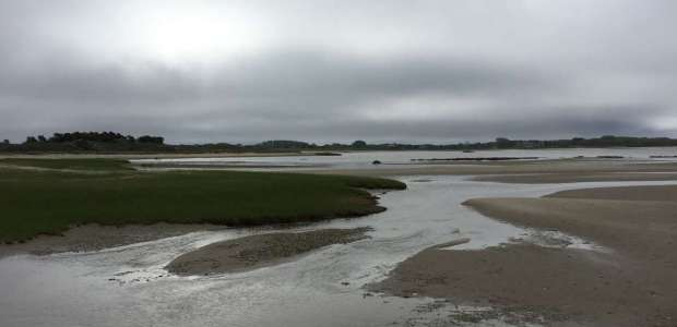 Low tide in front of Pocomo Meadows