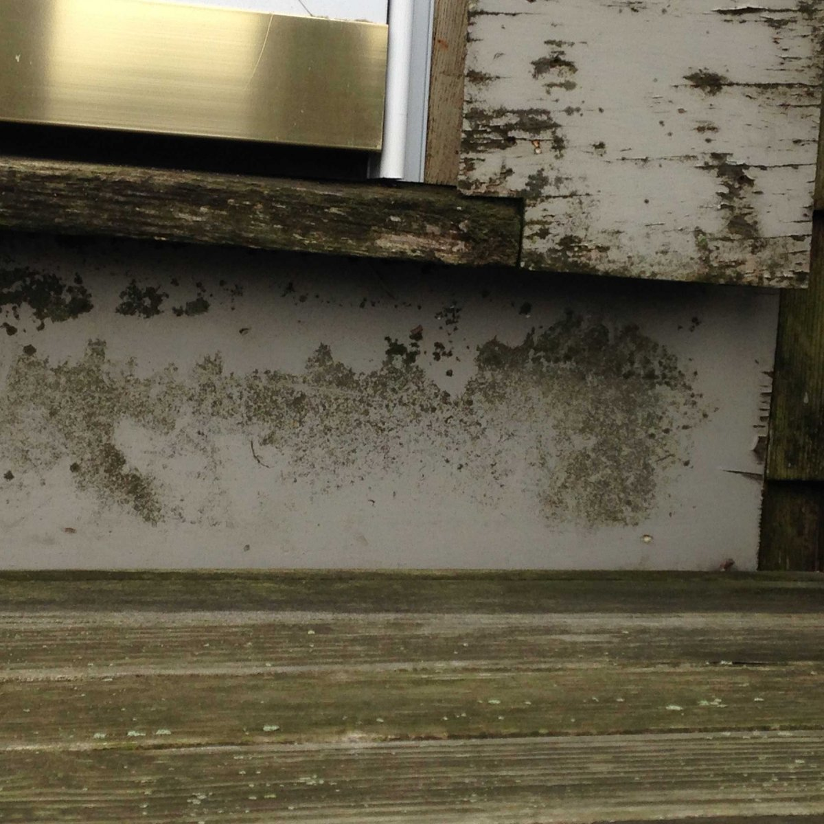 Causes Of Moisture Issues In Historic Homes House Maintenance Nantucket C