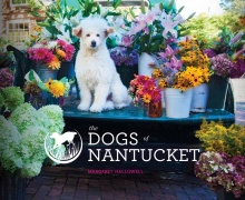 Dogs of Nantucket by Margaret B. Hallowell