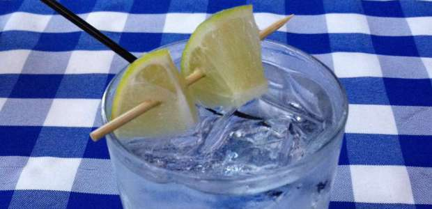 Summer Gin & Tonic