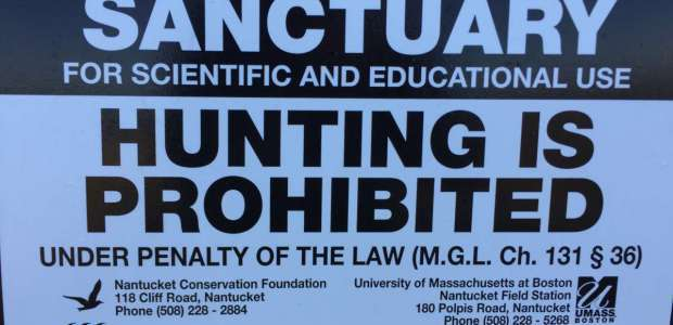Know the bounds of deer hunting on Nantucket and report any violators you encounter!