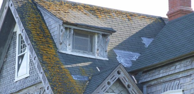 Moss, Buckling and missing shingles