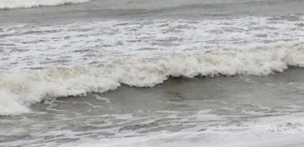 Gray surf at Eel Point