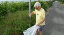 Jim O'Connell beautifying Codfish Park in 'Sconset.