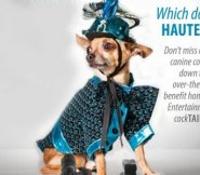 Canine Couture for a Cause