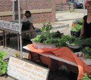 Two of the Nantucket farms at this year's market.