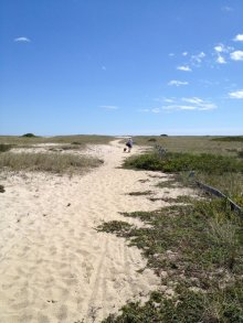 On the way to the beach, Nantucket