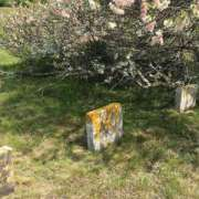 Beneath the grass and the flowers as well as the markers rest Quakers who lived long agol